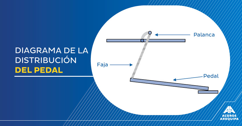 9-diagrama-de-la-distribucion-del-pedal