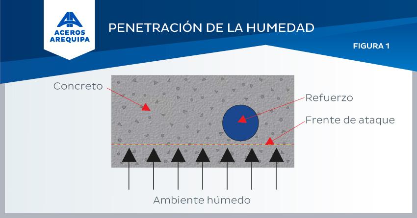 penetracion humedad